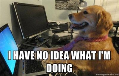 i-have-no-idea-what-im-doing-dog.jpg?w=1